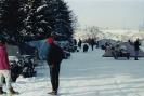 Henning 1992_3
