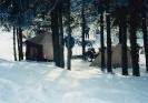 Henning 1992_4